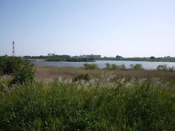 河原 (2).jpg