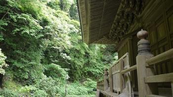 妙本寺祖師堂の杜.jpg